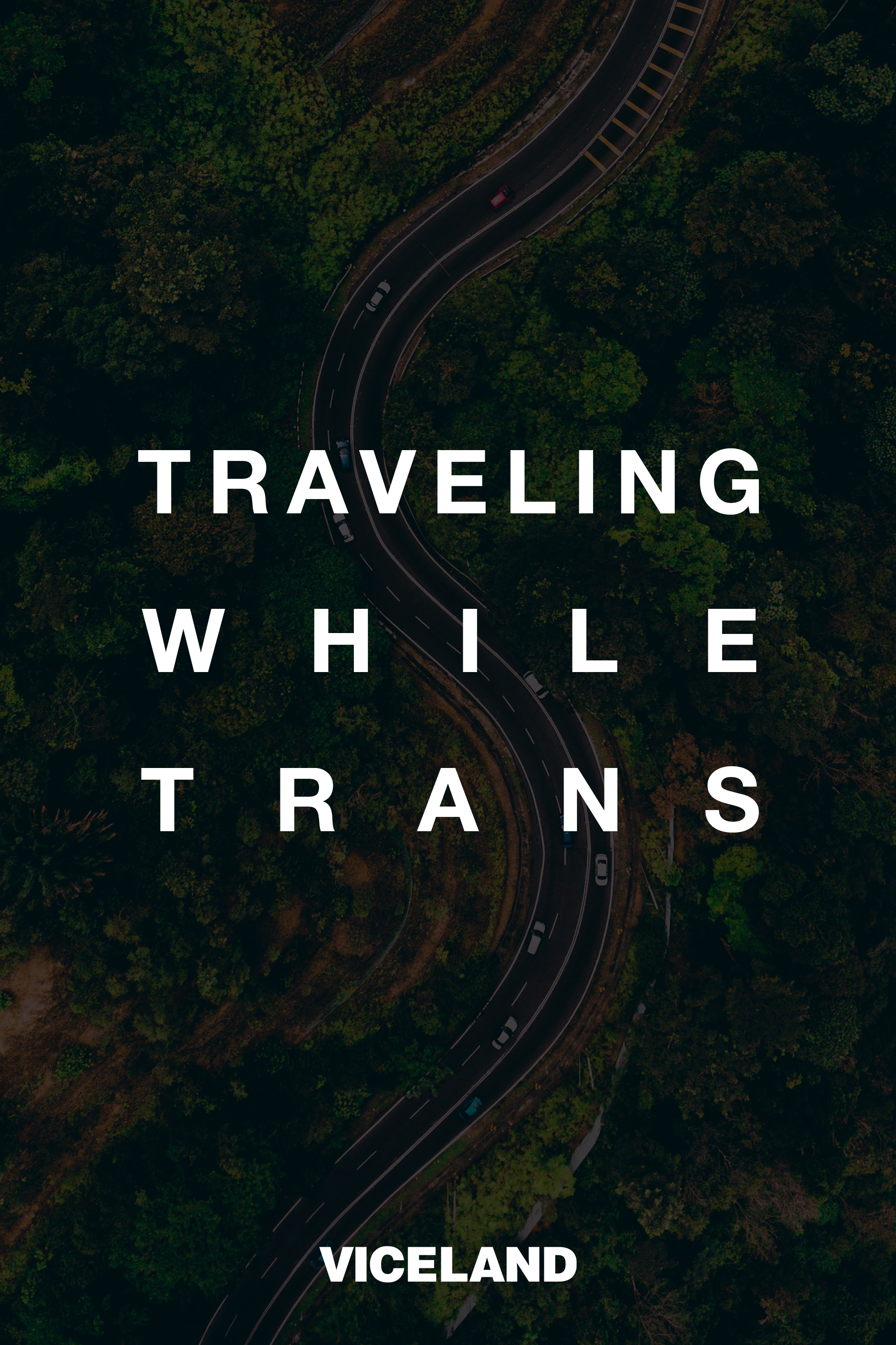 traveling while trans.jpg
