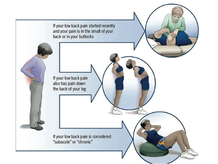 low back pain, physical therapy treatments, boulder, sub grouping