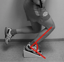 patellar-tendon-pain-exercise.png