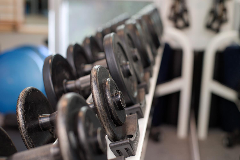 weight-training-women-muscle-strength