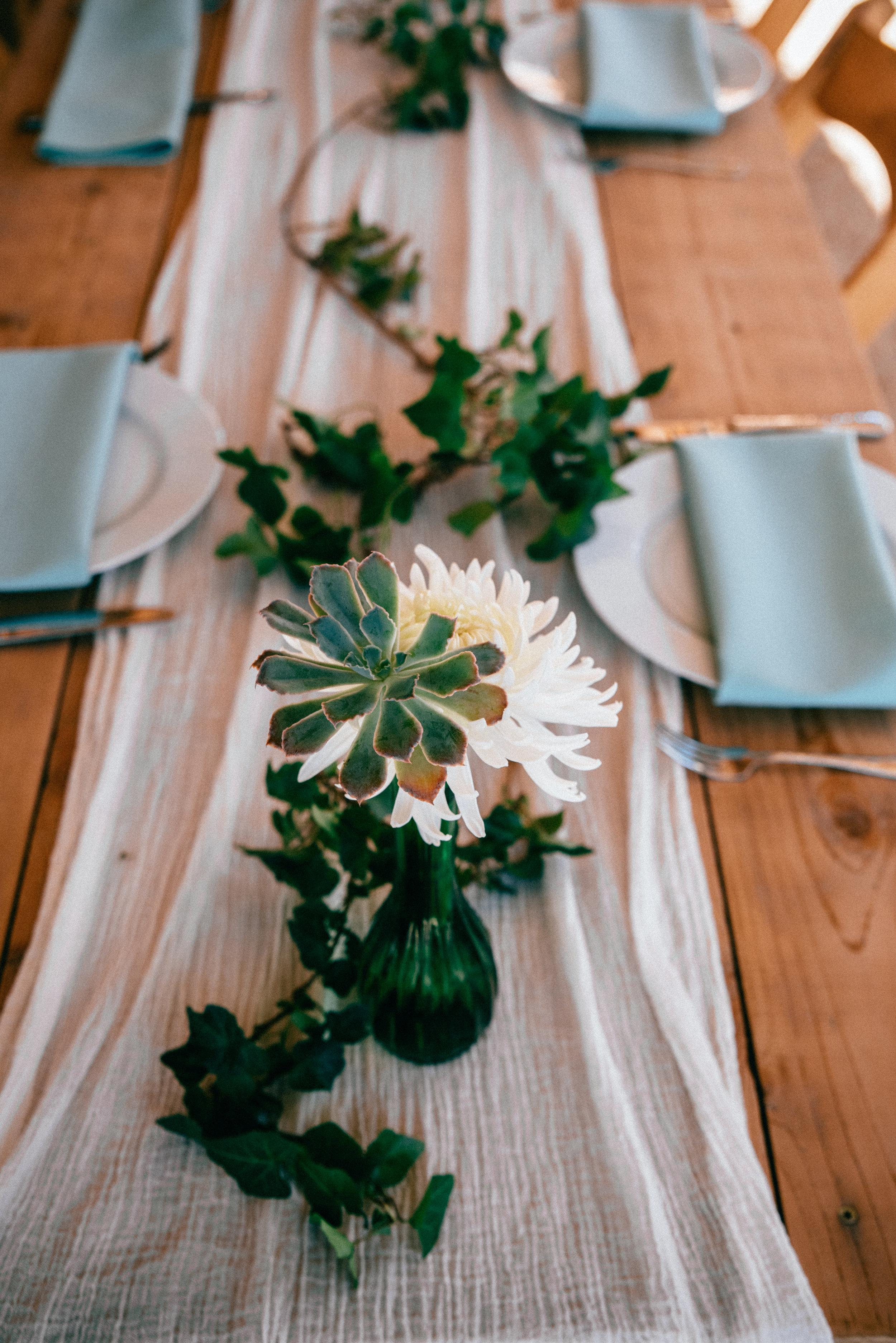 windy hill farm wedding - durham wedding photographer - north carolina wedding photographer