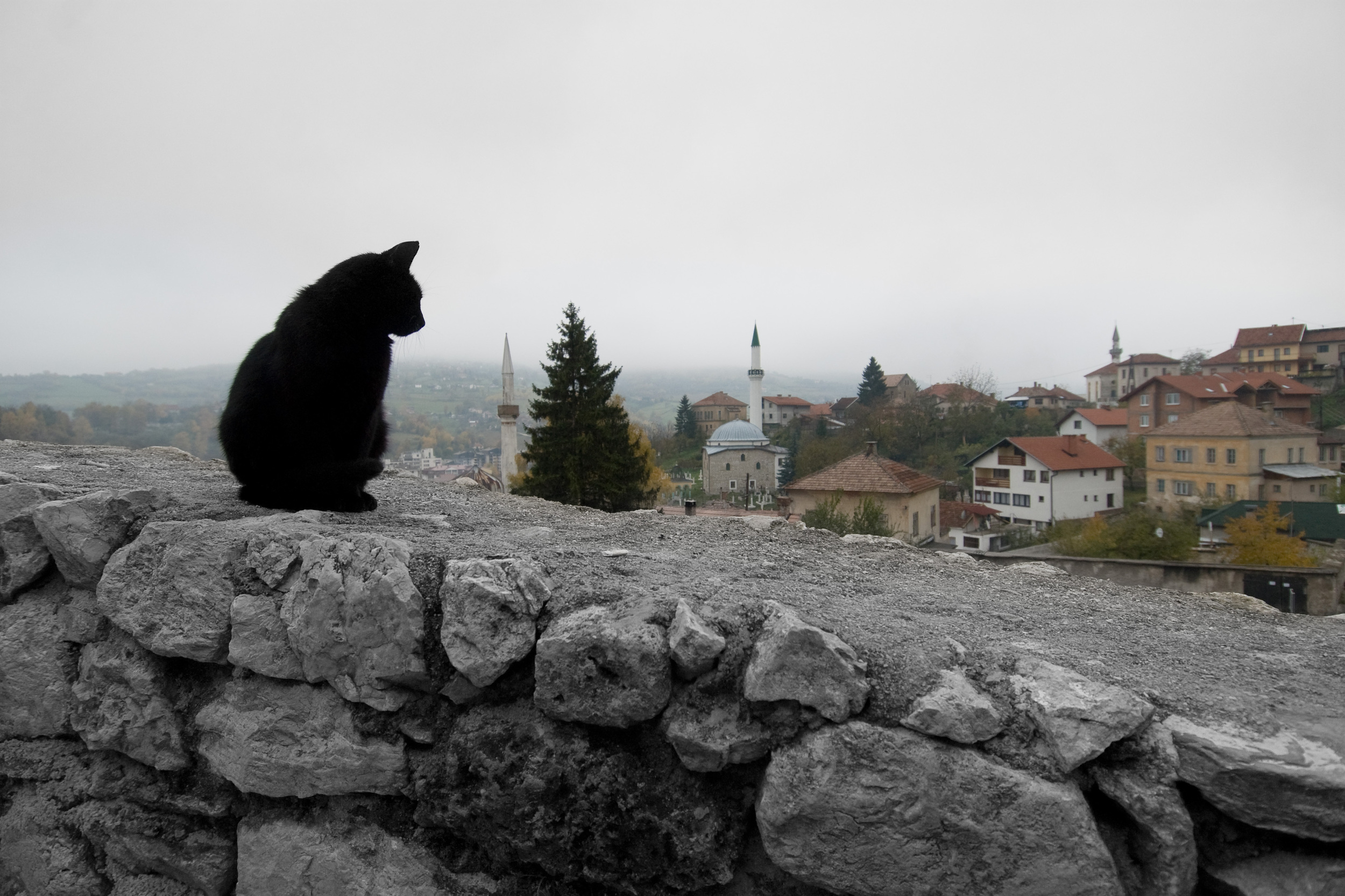 e2f_2042676_Travnik copy.jpg