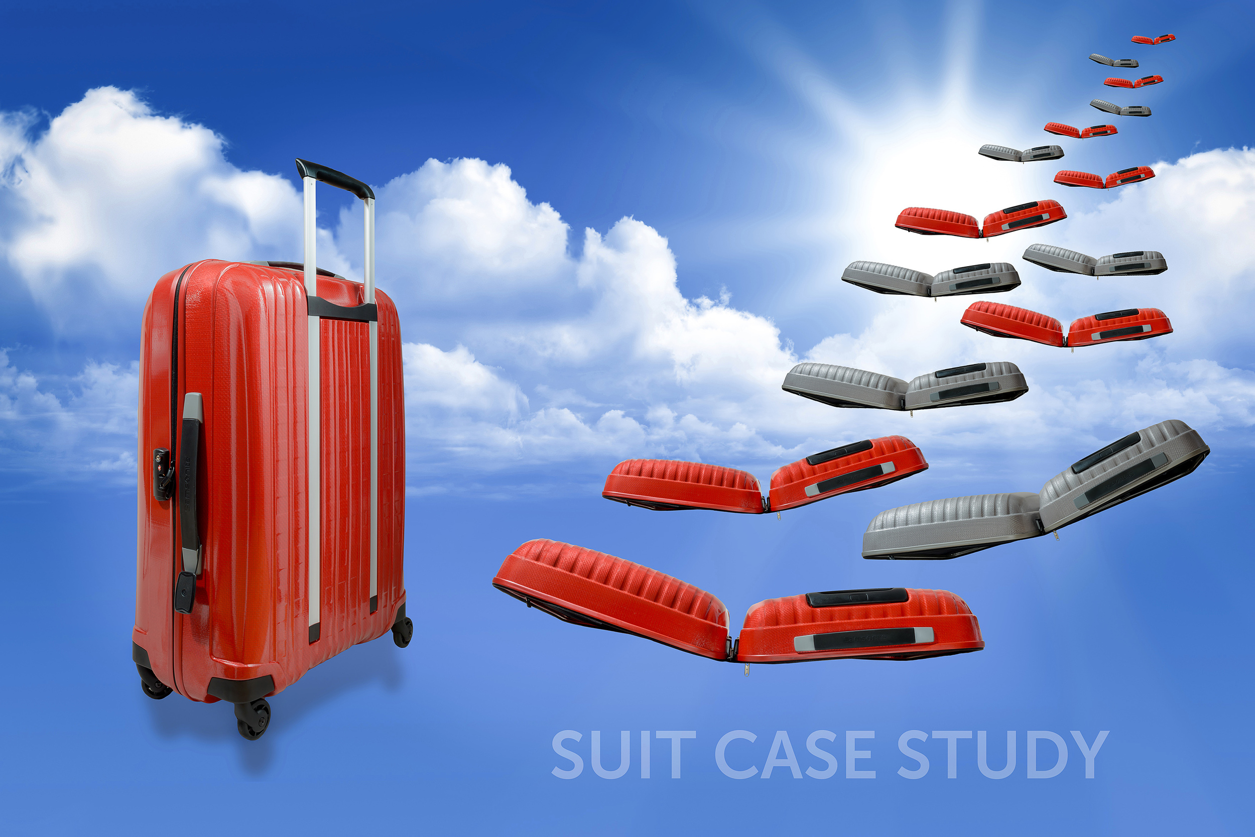samsonite_fly3b.jpg