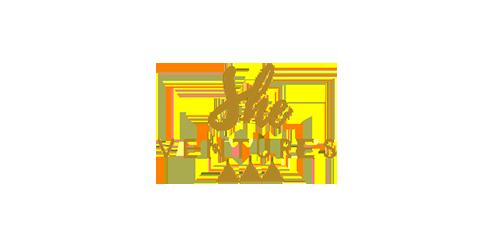 logo_she-vetures.png