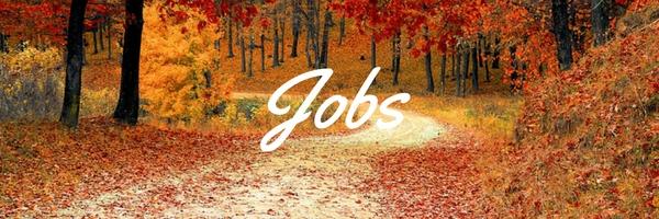 Jobs (1).jpg