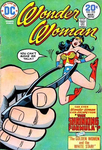 Wonder Woman (1942) #210, cover by Ric Estrada.