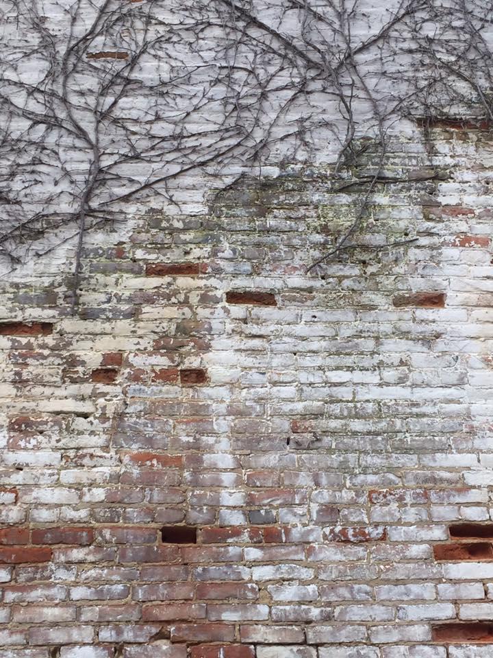 Art growing on the brick walls.