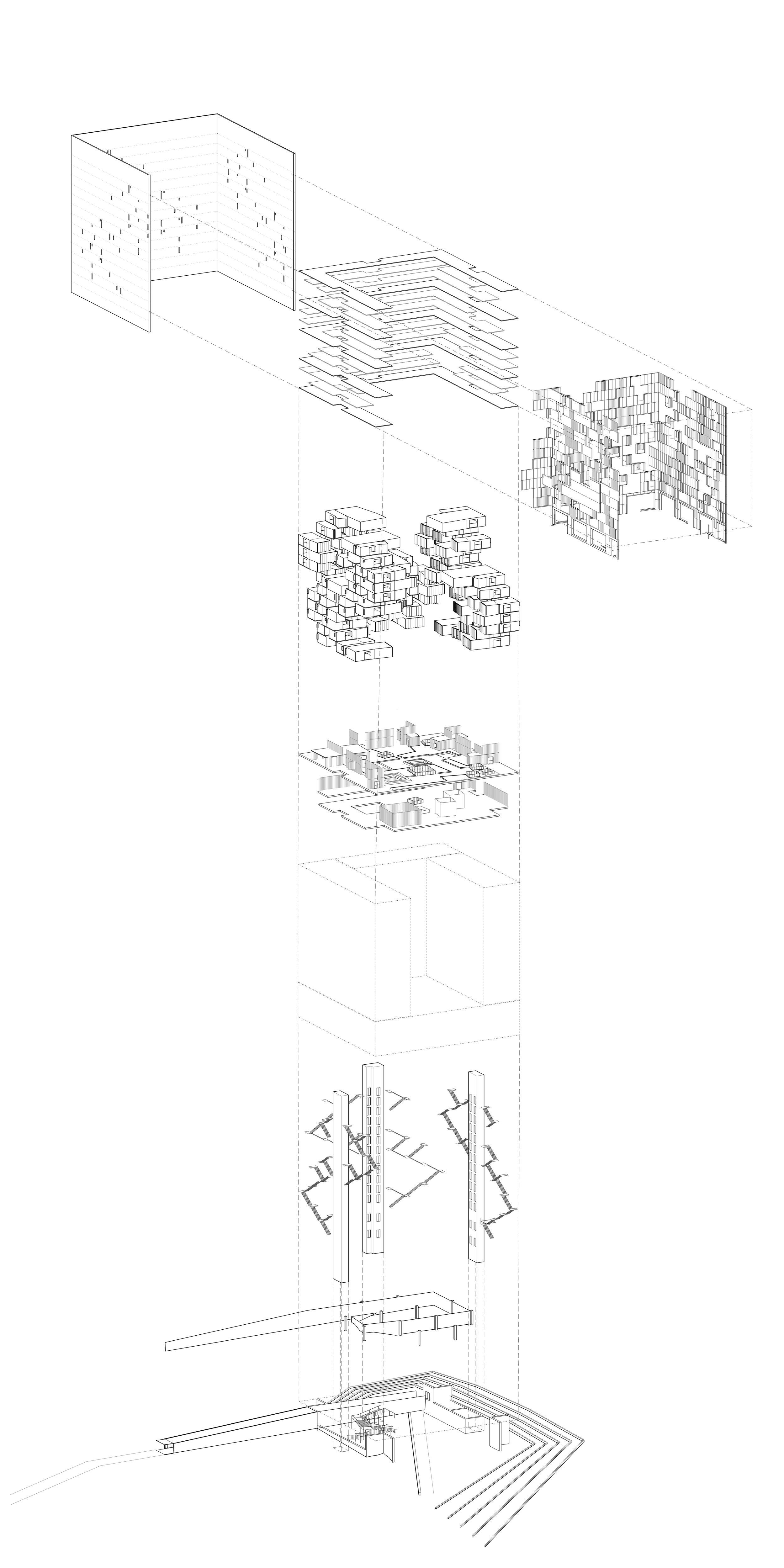 DP_Dean_Taurasi_Axon Diagram.jpg