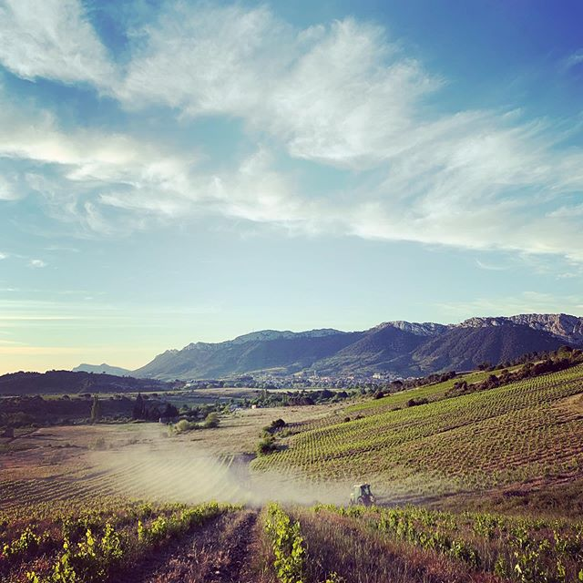 A 3am start working through the night of controlling vine disease. Loving seeing the morning sun rise over the vineyards. . . . . #outdoors #fun #tractor #clouds #vineyards #spraying #vines #mountains #blue #sky #nowind #working #challenge #wine #winecountry #climbing #difficult #steep #green #roll #winestagram #winelover #winerytour #vine #vineyardlife