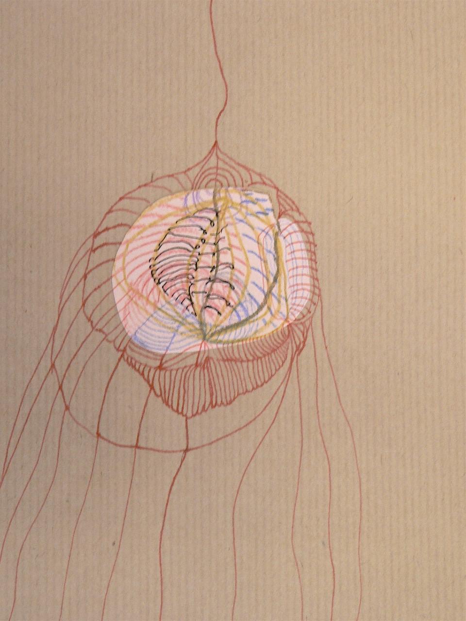 UNTITLED - jellyfish