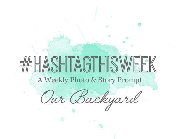 Turquoise Avenue - Weekly Photo & Journal Prompt for Memory Keepers