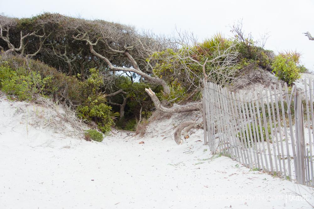 09.15.08 Seagrove Beach FL Vacation-27.JPG