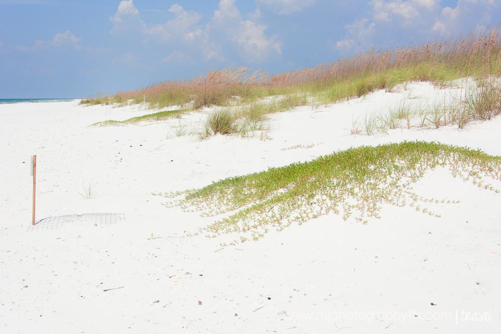 09.15.08 Seagrove Beach FL Vacation-36.JPG
