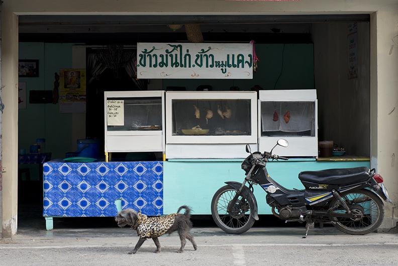 Thai Transportation NEW copy.jpg