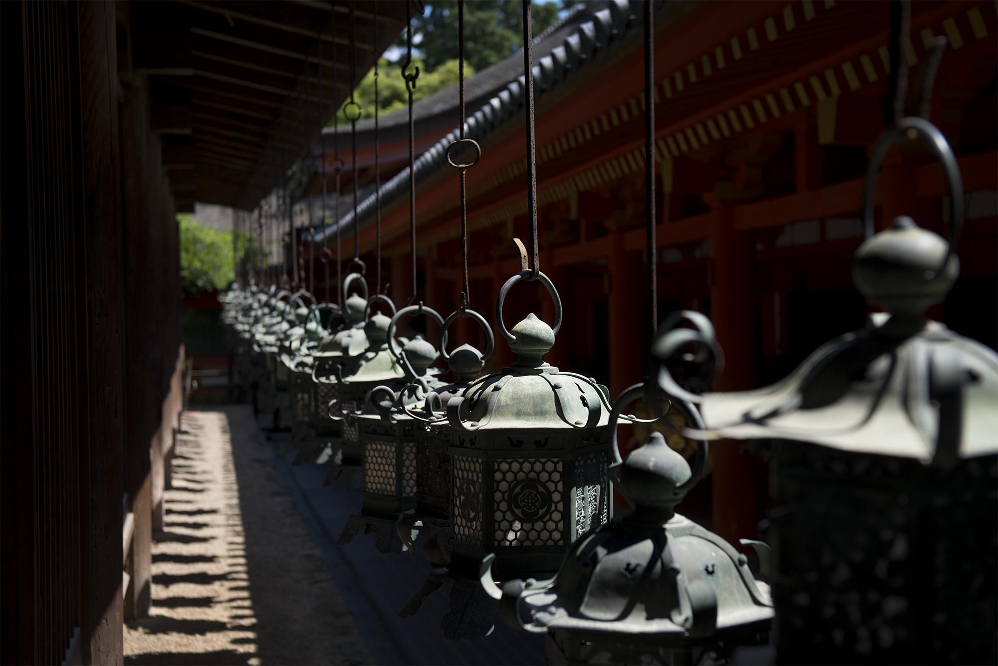 Nara Lanterns.jpg