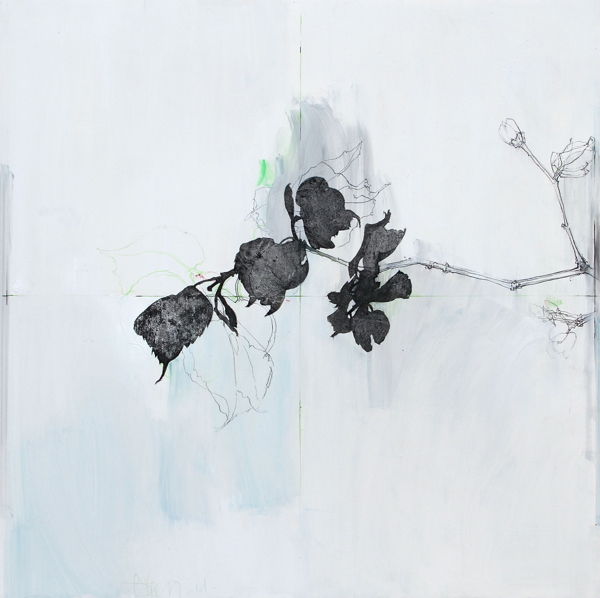 Laurie Steen RWA Spring Sonnet 11 - 14 40 x 40 cm graphite, conte & coloured pencil on gesso panel S O L D