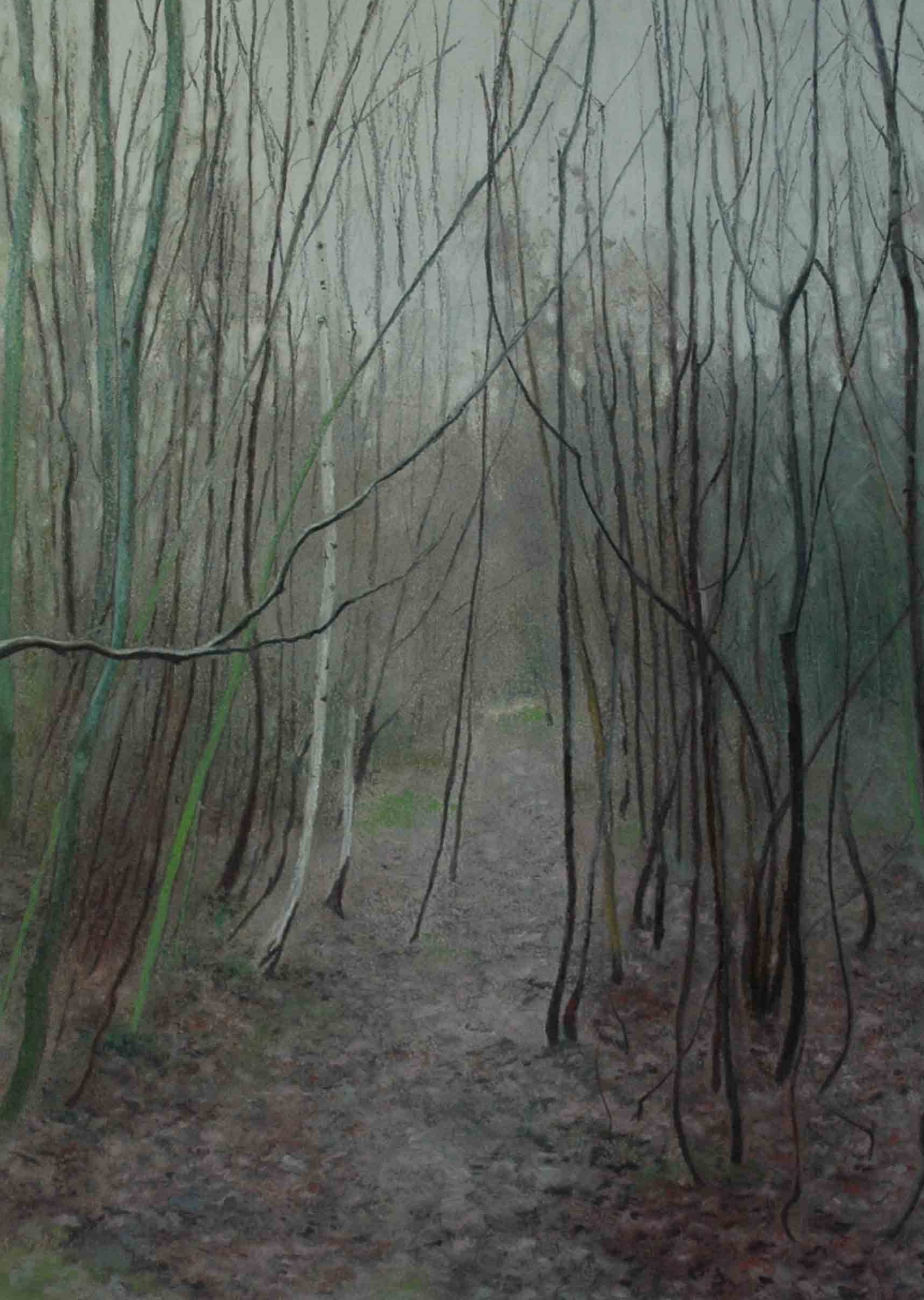 Alistair Teale Copse 38 x 49 cm chalk pastel on paper £ 500 (framed)