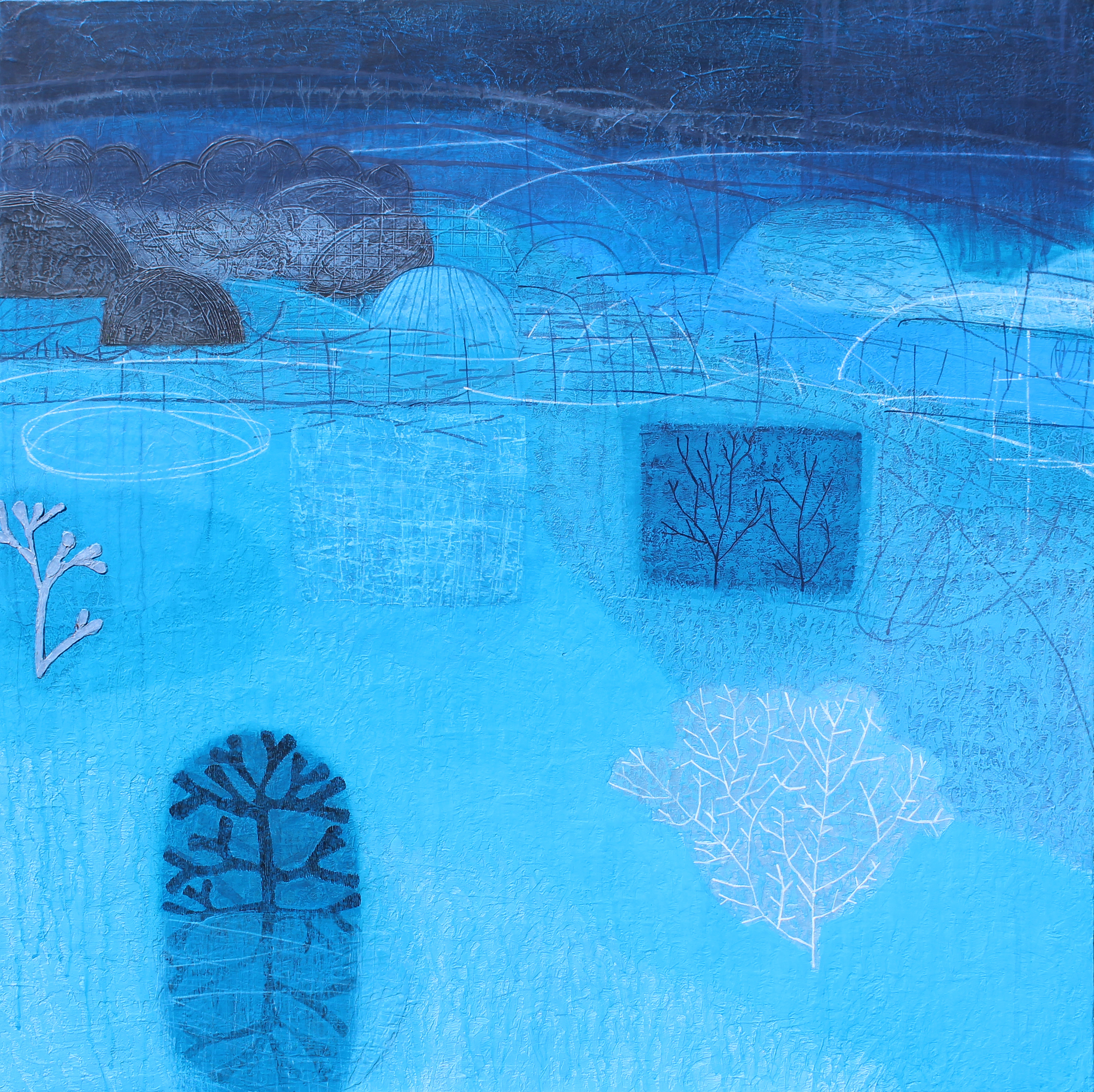 Maggie Matthews Drawing Upon Nature mixed media on canvas 100 x 100 cm £ 2950