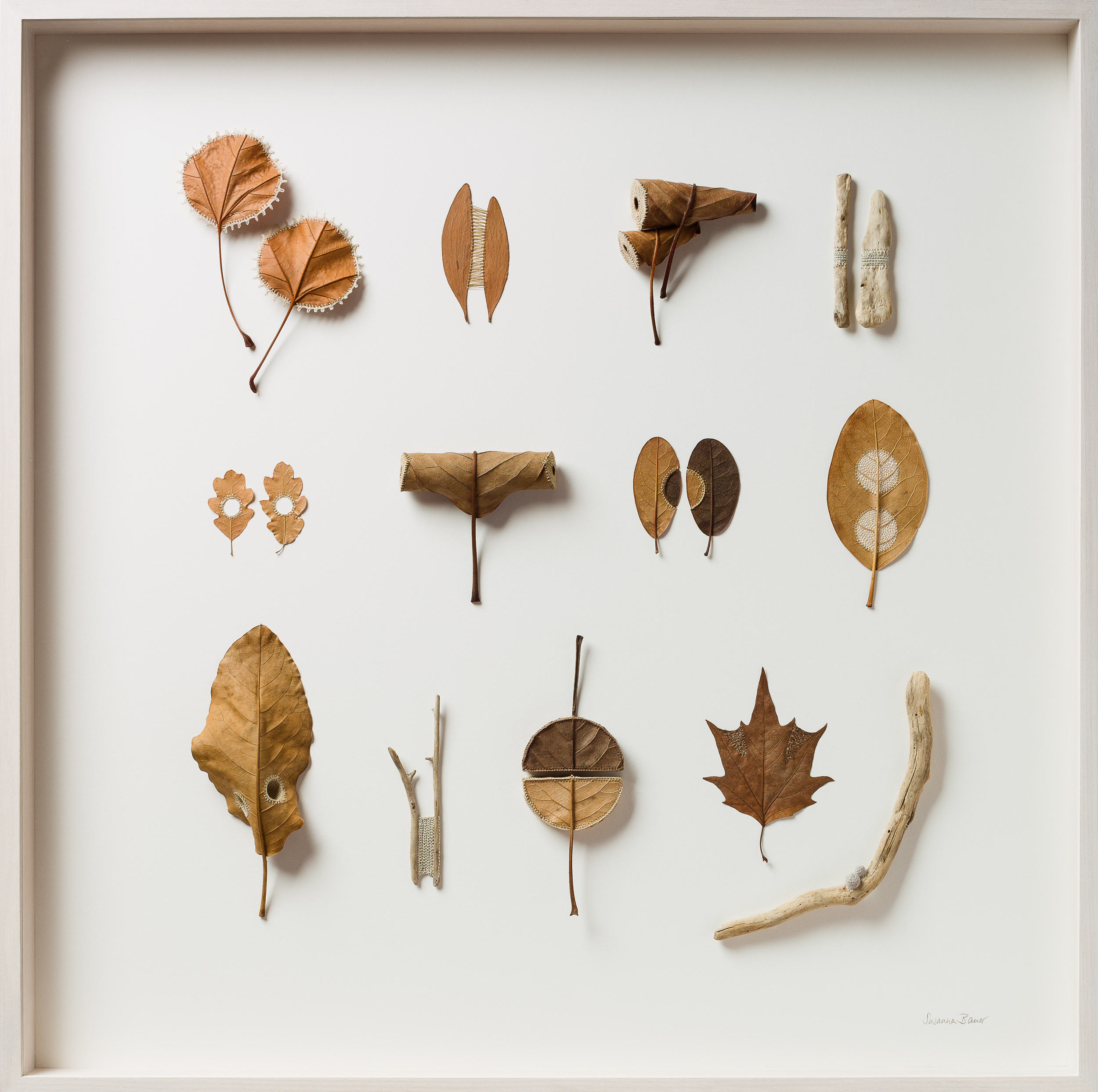 Susanna Bauer Collection - Two by Two magnolia, platanus, oak & eucalyptus leaves, wood & cotton yarn 75 x 5 x 75 cm S O L D