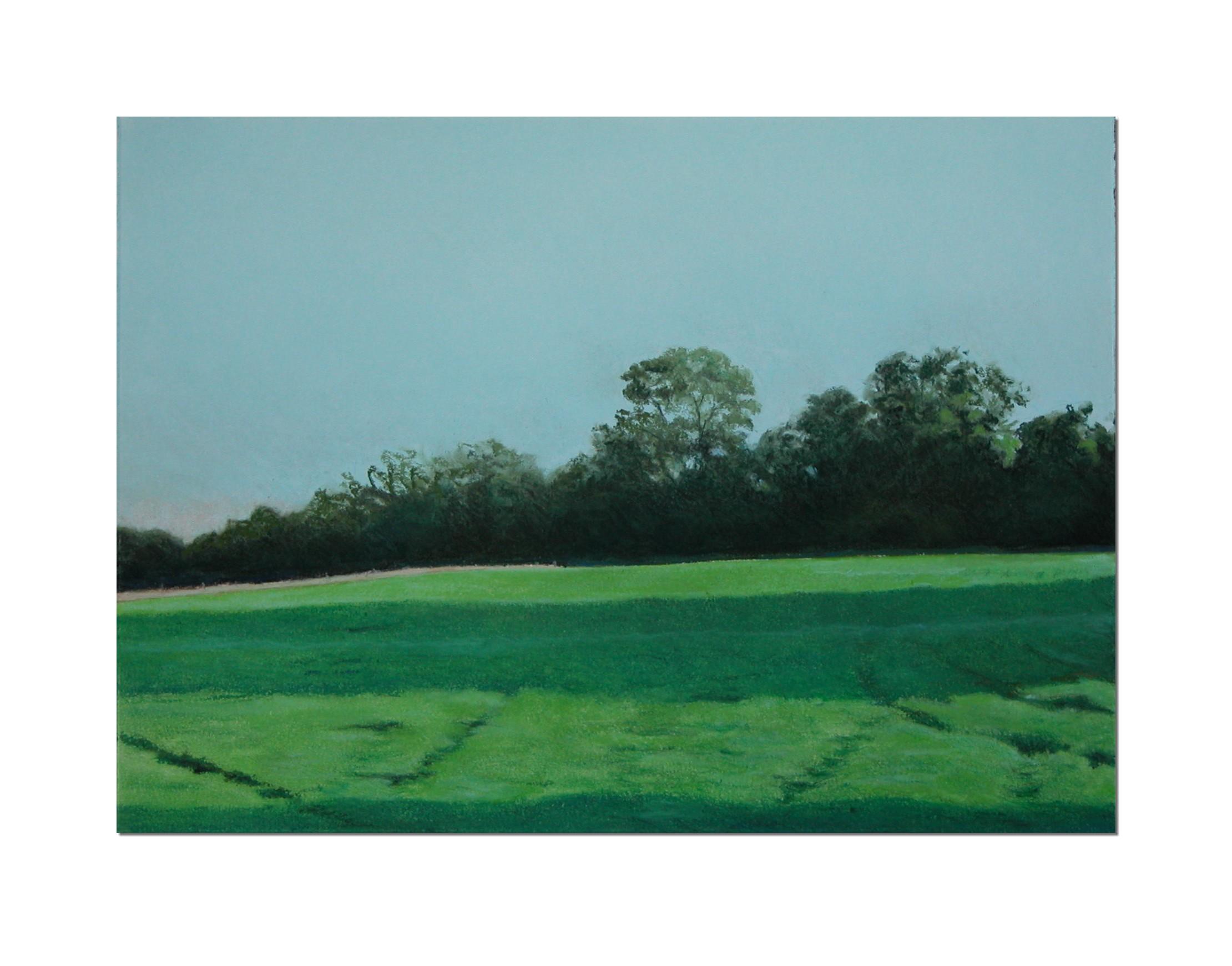 Field No2  unframed 36 x 26 cm chalk pastel on paper £ 525