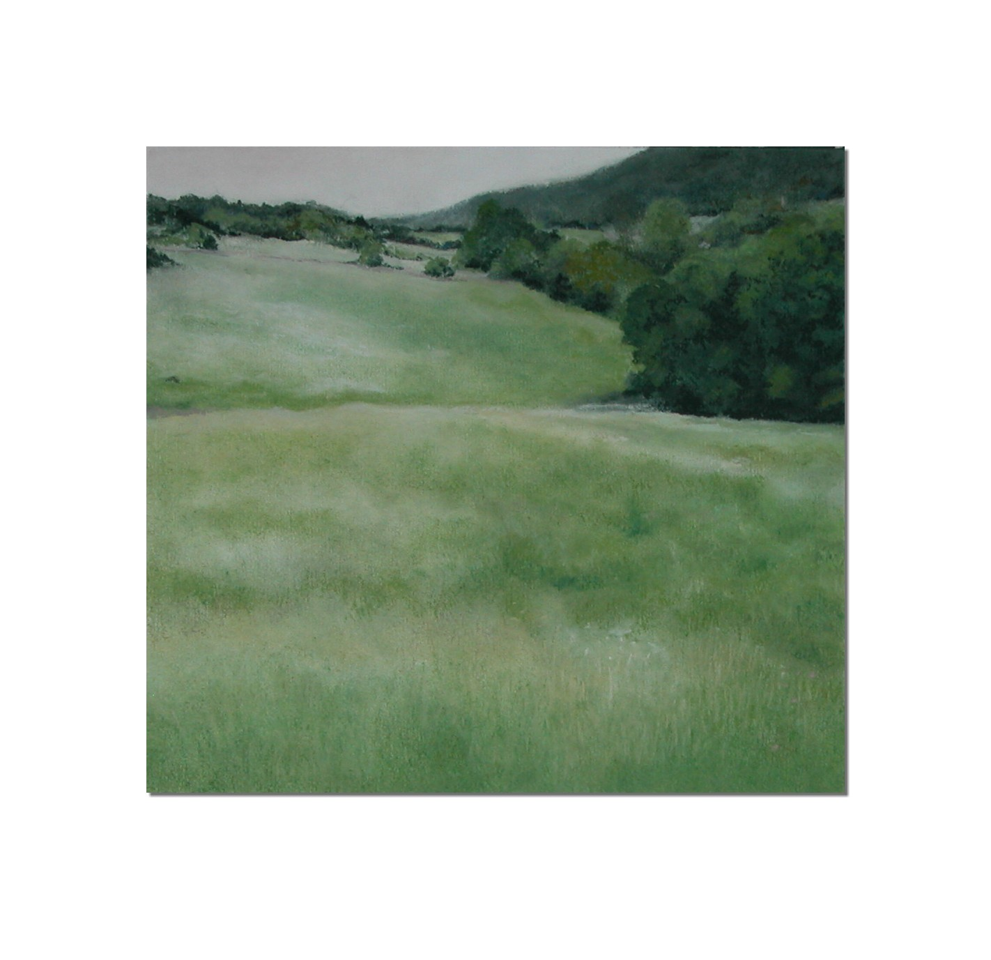 Grassland unframed 26 x 24 cm chalk pastel on paper £ 425