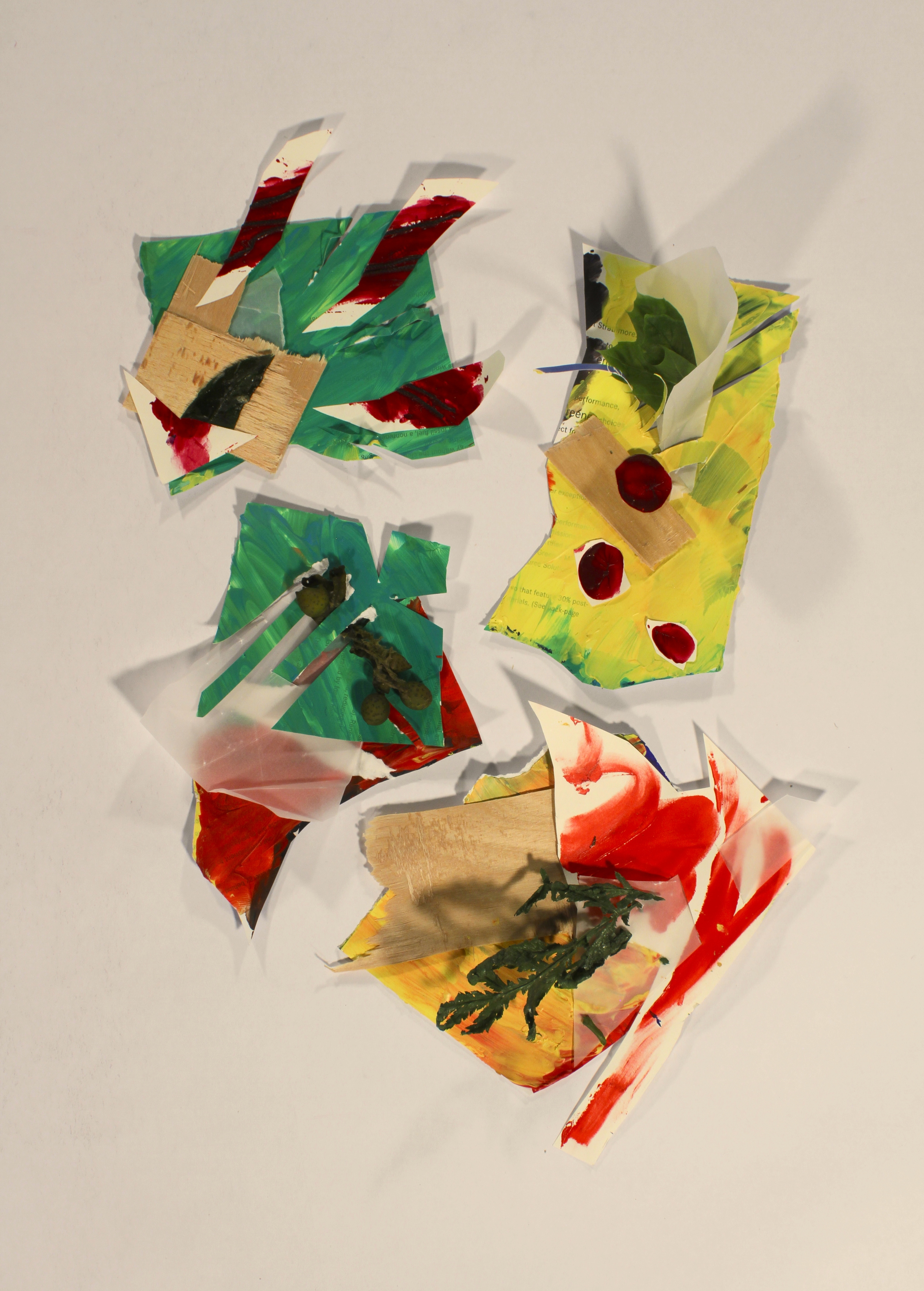 Whirlwinds- Shattered  2014, paper, vellum, wood, acrylic, twine, assorted plants, 14in x 6.5in