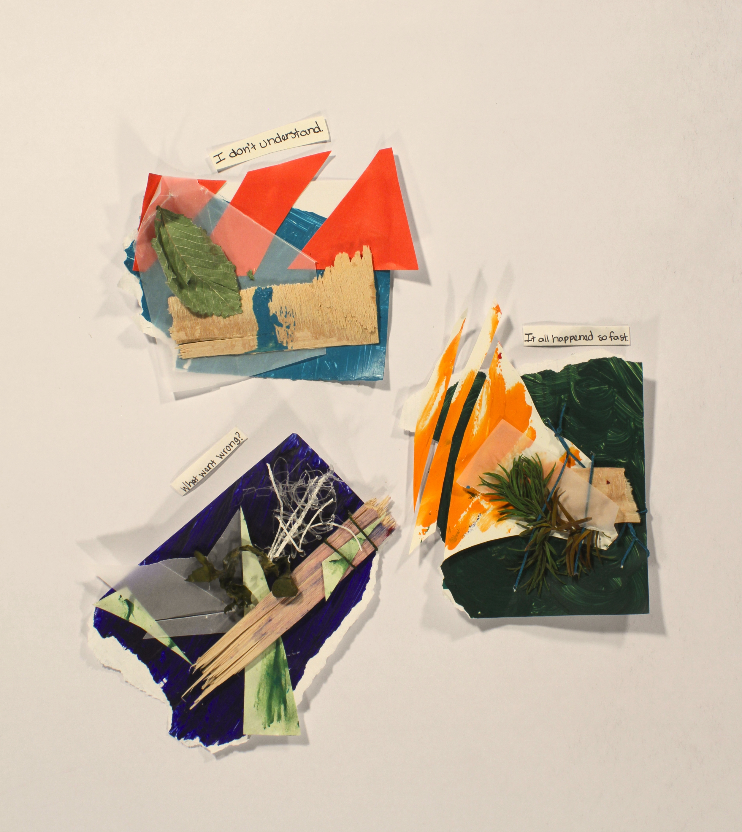 Missunderstandings- Confusion  2014, paper, vellum, acrylic, wood, marker, assorted plants, hot glue, twine, 12in x 11in