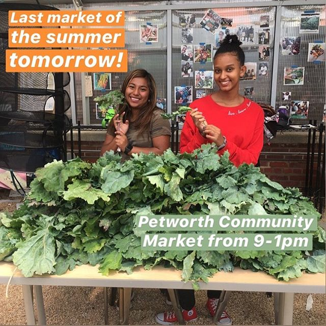 ⛔️This. Is. Not. A. Drill ⛔️Last chance to catch us at a market before fall! Stop by to say hi and treat yourself with some of our veggies, a beautiful bouquet or any of our handmade products! #farmersmarket #dc #grown #fresh #eatwell #supportsmallbusiness #buylocal #teens #dcgrown #freshfood #cityblossoms #wearemightygreens