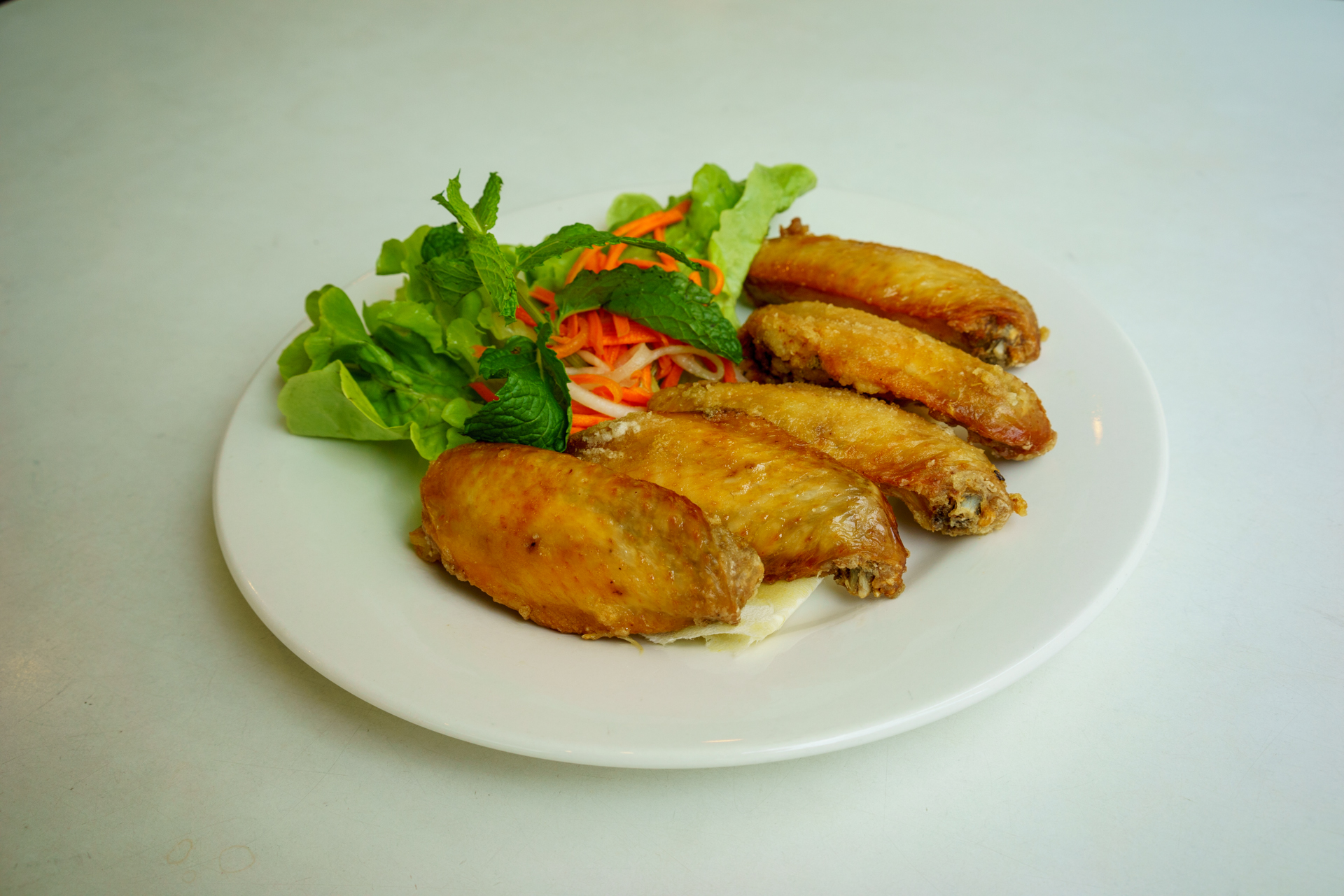 lightened wings ~ canh ga chien