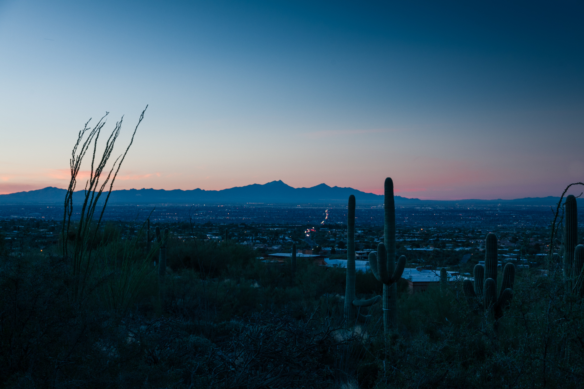 Southwest_022017-385.jpg