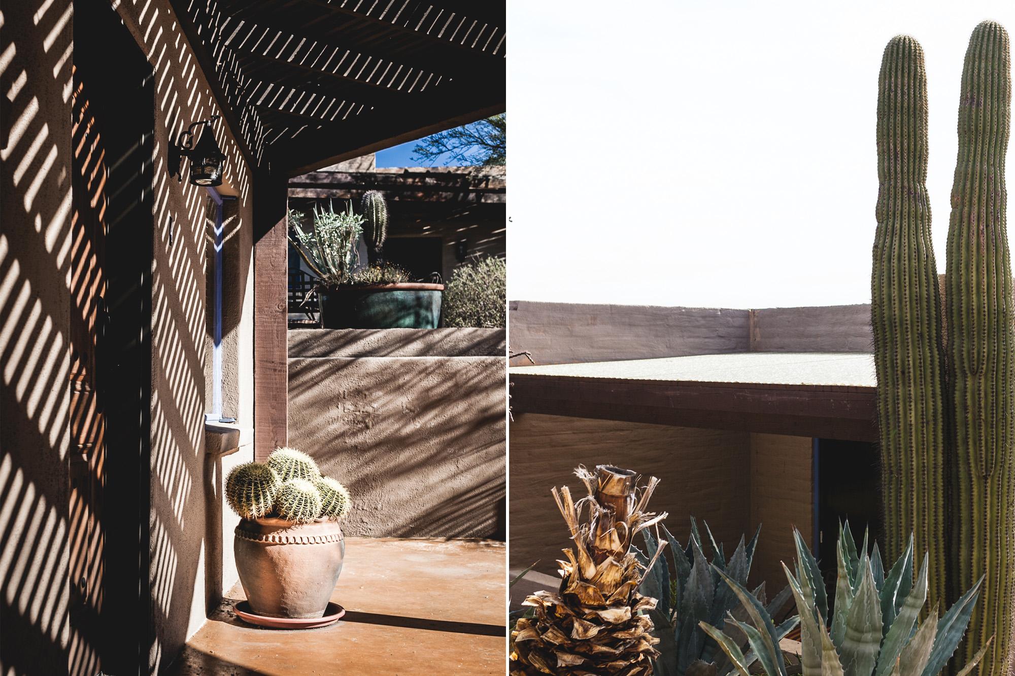 Vertical_Tucson.jpg