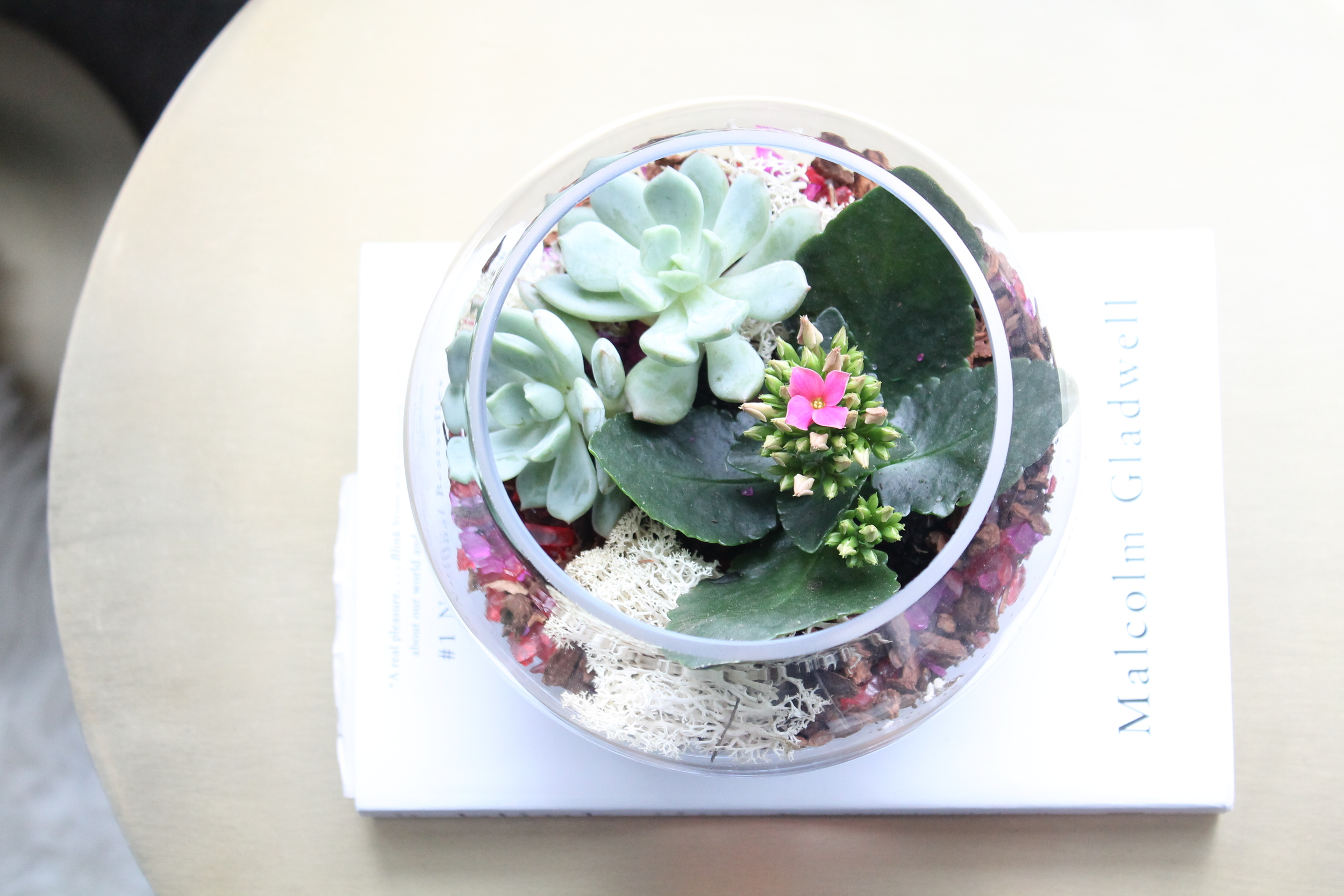 Terrarium atop a pink and gold martini table from West Elm.
