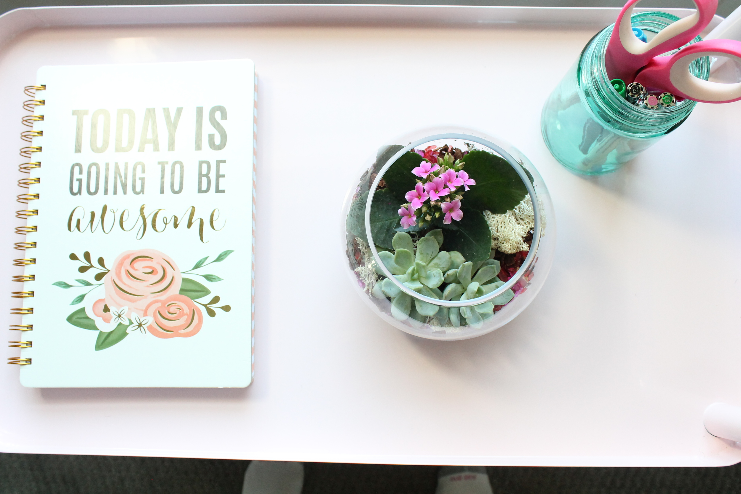 Notebook, succulents and blue glass mason jar on a pink rolling cart.