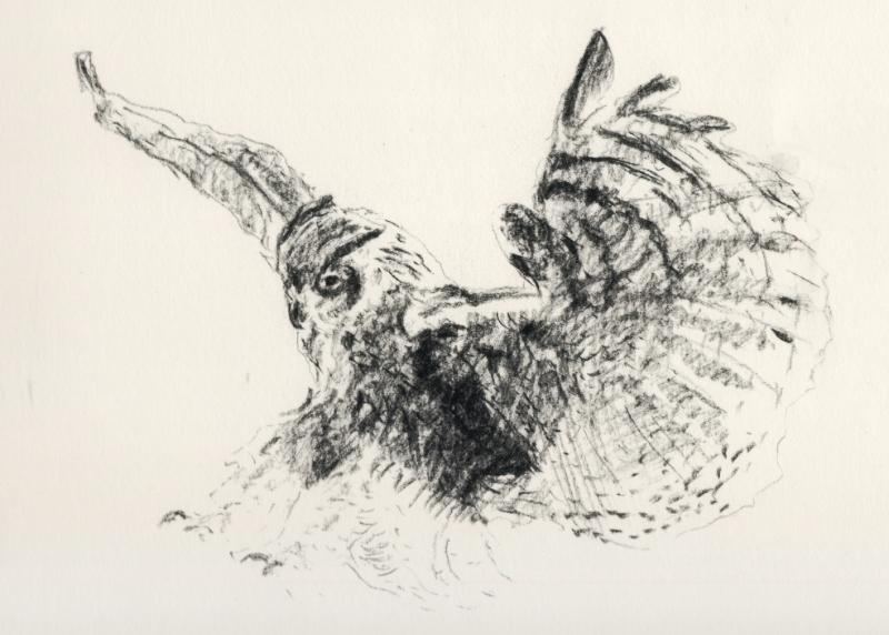 """""""Owl in Flight"""" (2015)"""