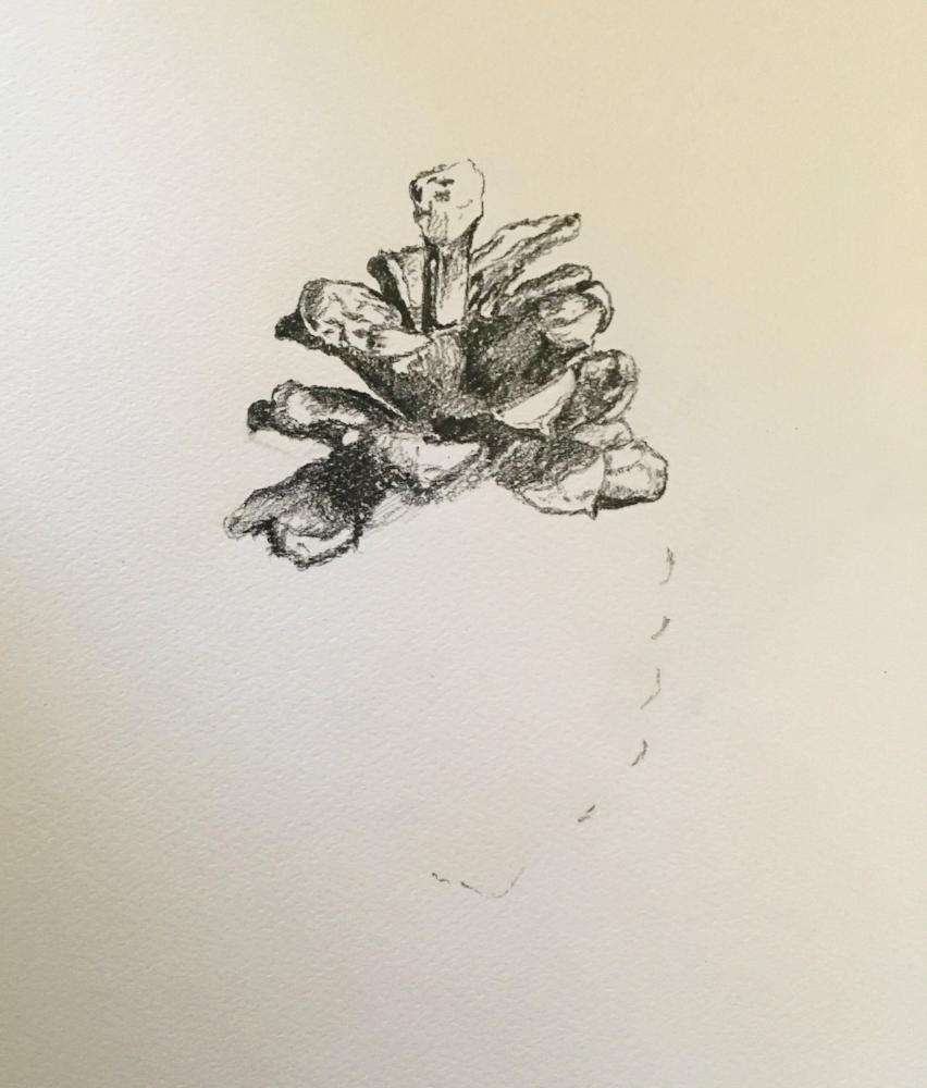 """Pinecone [IN PROGRESS]"" (2018)"
