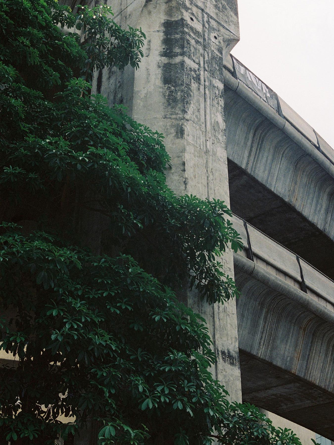 Thailand-Contax28.JPG