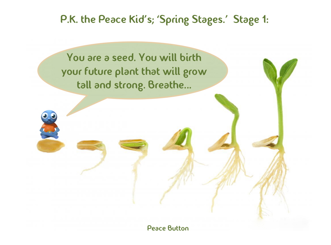PK's Spring Stages - 1