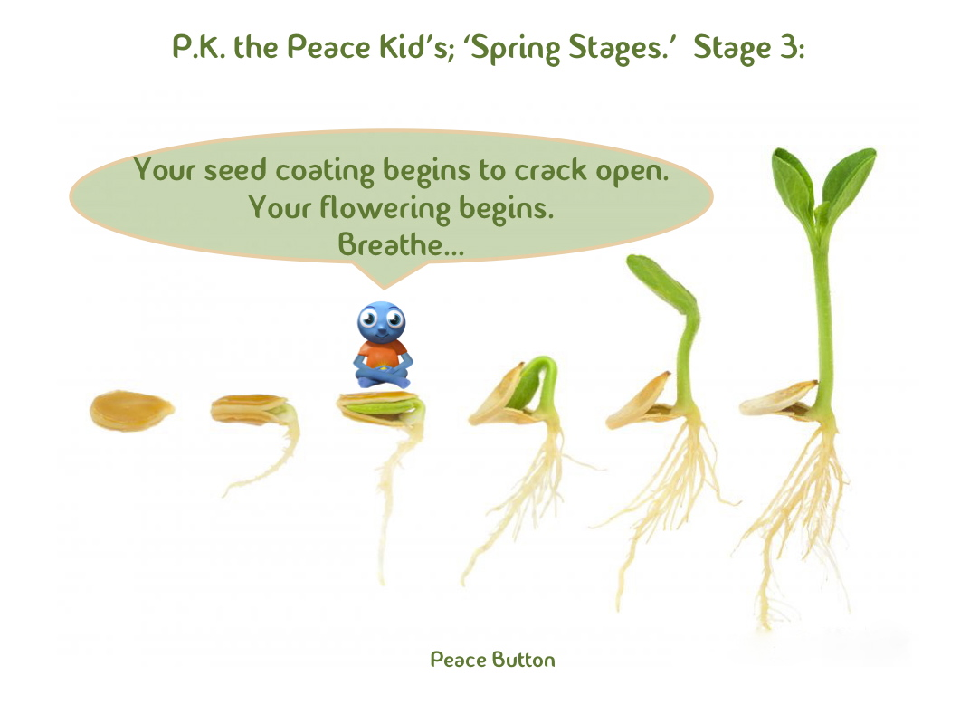 PK's Spring Stages - 3