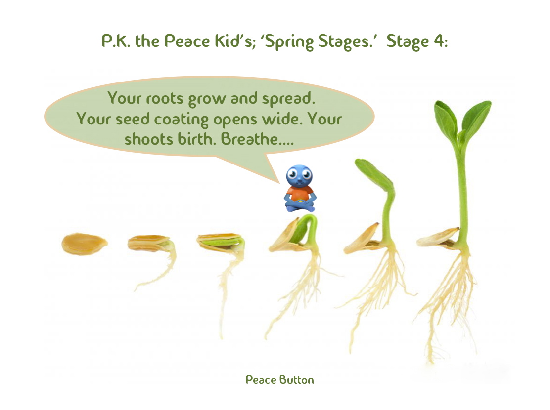PK's Spring Stages - 4