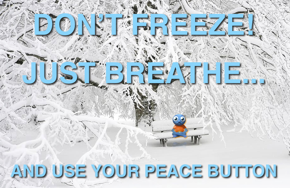 Don't Freeze!