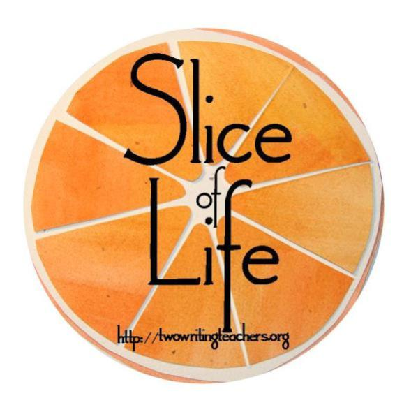 - Each Tuesday and throughout the month of March, my colleagues at Two Writing Teachers and I host the Slice of Life Story Challenge, where hundreds of teachers practice their own writing.To learn more about the Slice of Life Story Chalellenge, click here.