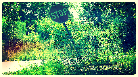 Centralia Stop.jpg
