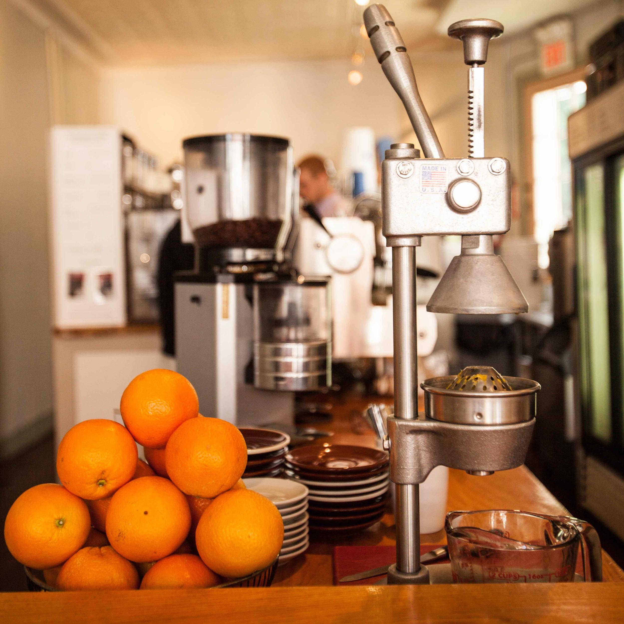NC oranges web copy.jpg
