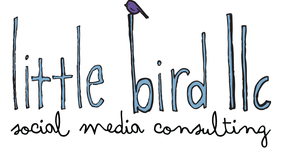 little bird llc