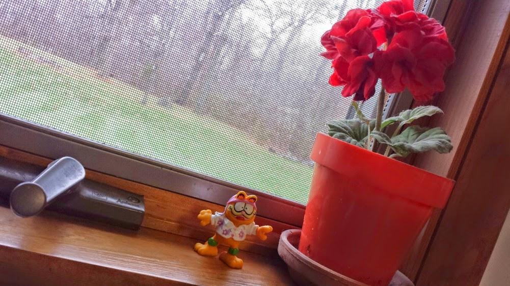 de(tale): windowsill