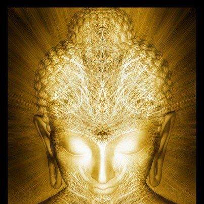 LS & D, Illuminate mind, Light, spirit, connected.jpg