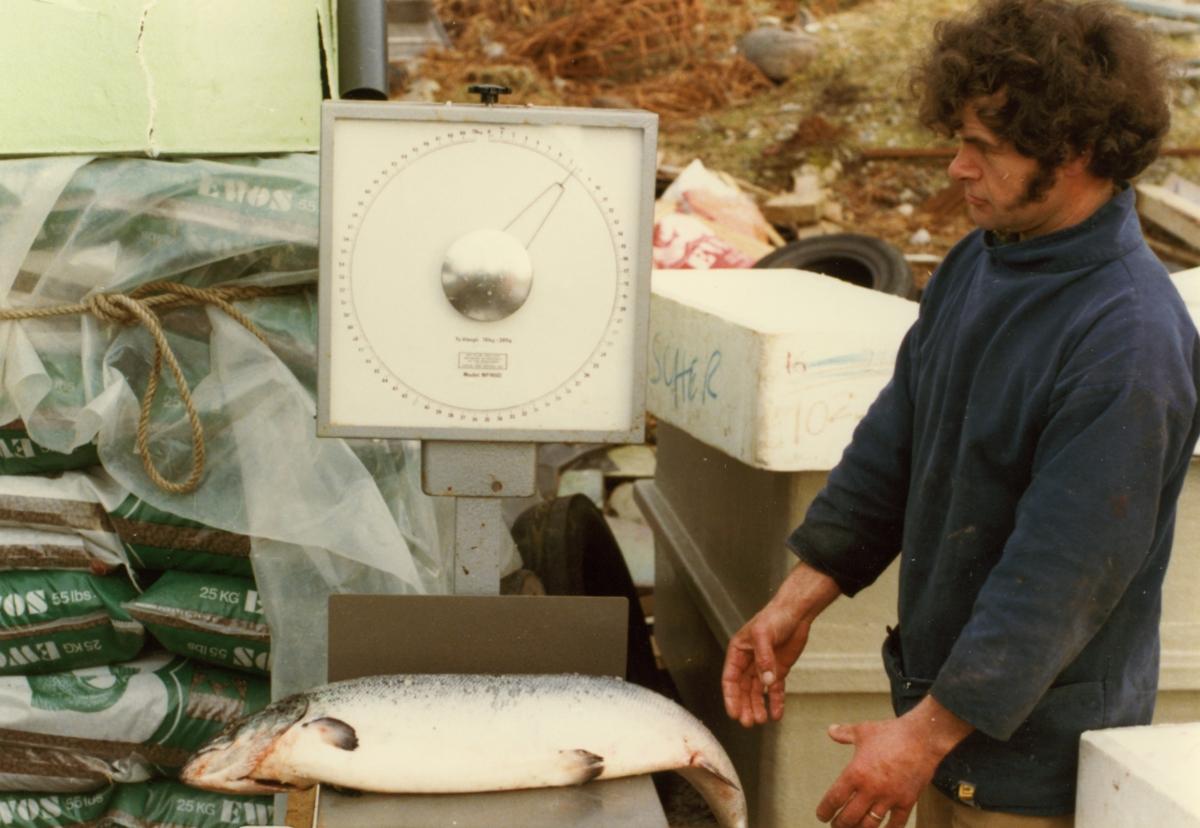 RB packing fish 1982.jpg