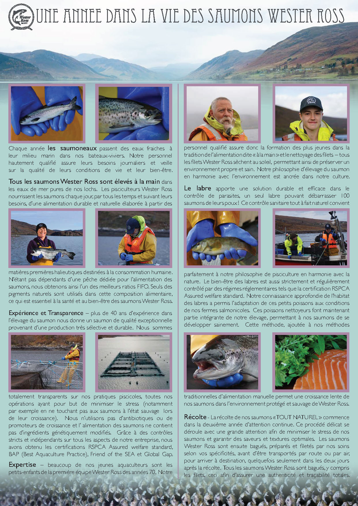 French leaflet jpeg page 1.jpg