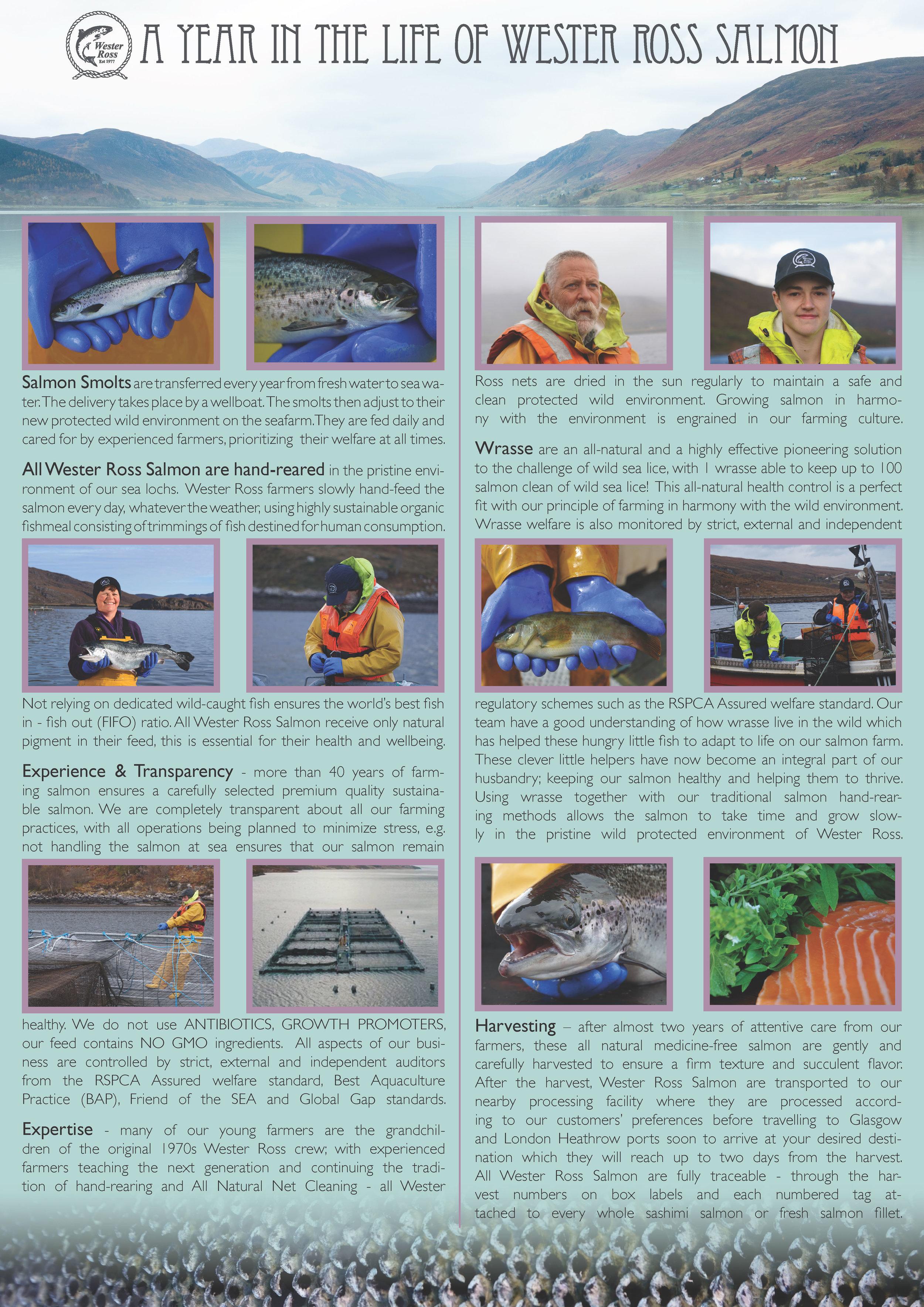 Wester Ross leaflet jpeg.jpg