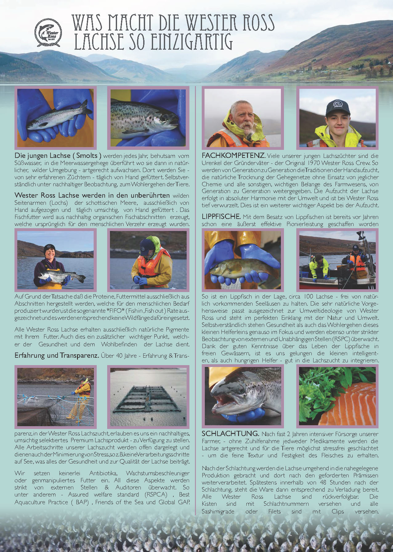 German leaflet jpeg page 1.jpg